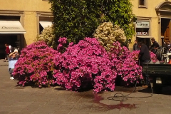 Toscana_062